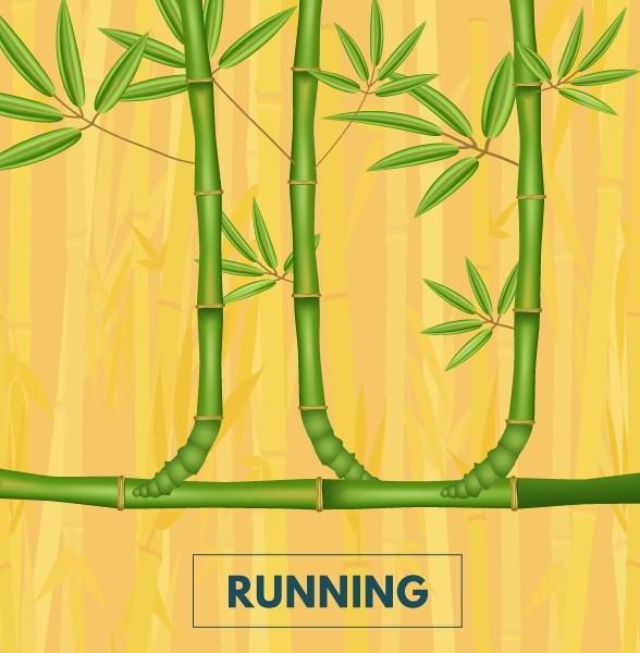 running bamboo cape town