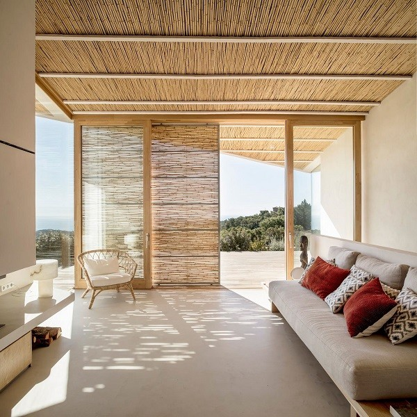 bamboo ceilings cape town