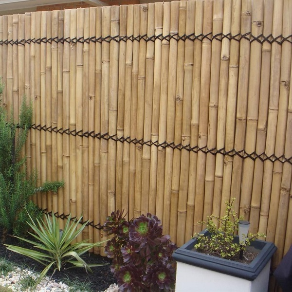bamboo fence cape town