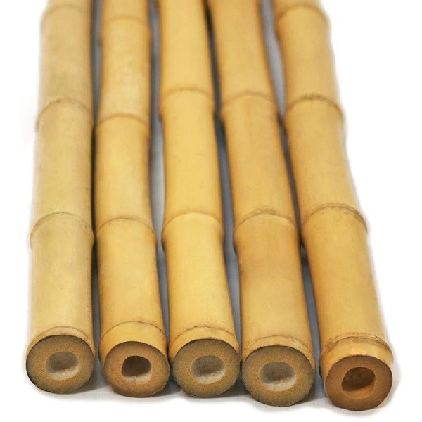 bamboo poles cape town
