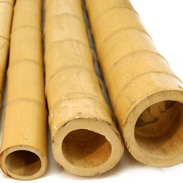 bamboo poles south africa