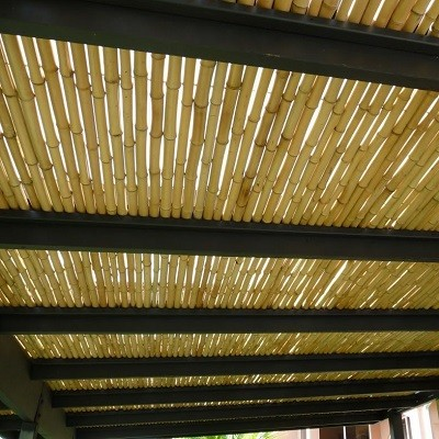 https://bambootrees.co.za/wp-content/uploads/2021/05/bamboo-products-ceiling.jpg